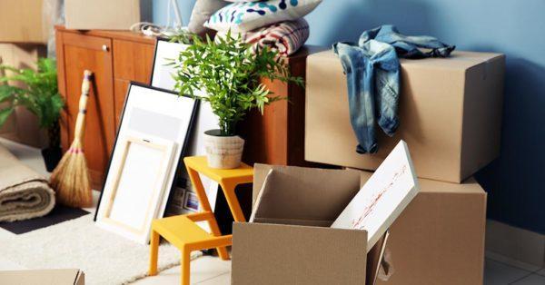 think green environmentally friendly mover ecobox