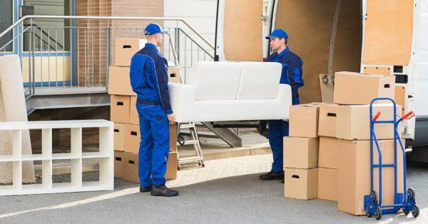 choose mover south africa moving boxes