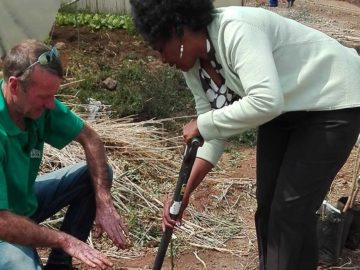 Ecobox Tree Planting Projects with Food & Trees for Africa